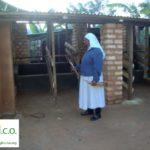 AICO progetto Help Children Prison - la stalla per la mucca